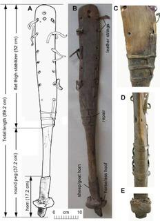 Li_Figure 3.jpg